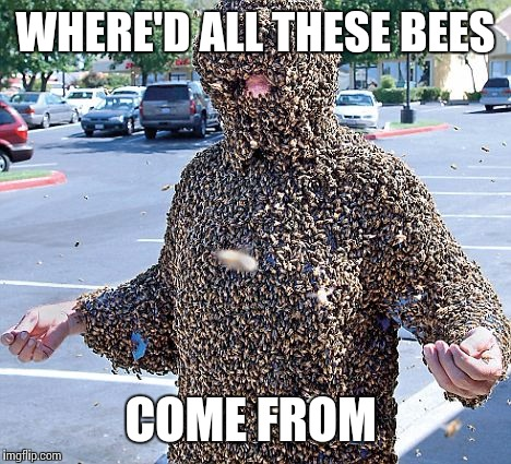 WHERE'D ALL THESE BEES COME FROM | made w/ Imgflip meme maker