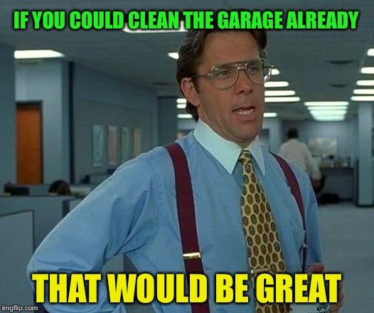 That Would Be Great Meme | IF YOU COULD CLEAN THE GARAGE ALREADY THAT WOULD BE GREAT | image tagged in memes,that would be great | made w/ Imgflip meme maker