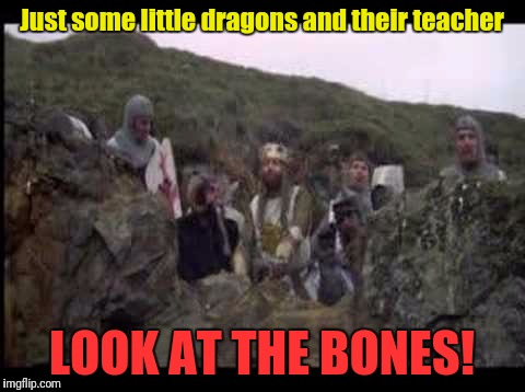 Just some little dragons and their teacher LOOK AT THE BONES! | made w/ Imgflip meme maker