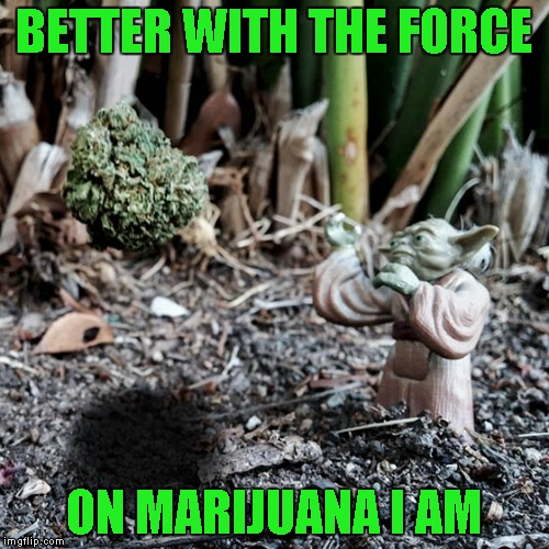 BETTER WITH THE FORCE ON MARIJUANA I AM | made w/ Imgflip meme maker