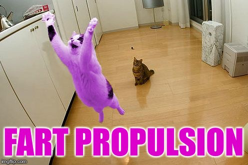 RayCat save the world | FART PROPULSION | image tagged in raycat save the world | made w/ Imgflip meme maker