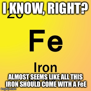 I KNOW, RIGHT? ALMOST SEEMS LIKE ALL THIS IRON SHOULD COME WITH A FeE | made w/ Imgflip meme maker