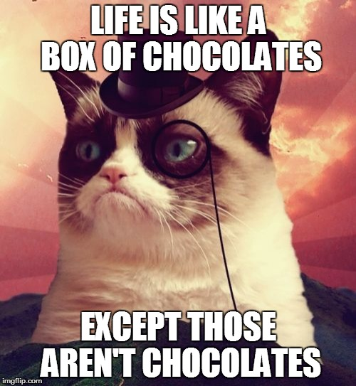The real meaning of like | LIFE IS LIKE A BOX OF CHOCOLATES EXCEPT THOSE AREN'T CHOCOLATES | image tagged in memes,grumpy cat top hat,grumpy cat | made w/ Imgflip meme maker