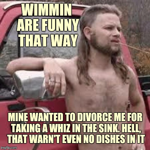 WIMMIN ARE FUNNY THAT WAY MINE WANTED TO DIVORCE ME FOR TAKING A WHIZ IN THE SINK. HELL, THAT WARN'T EVEN NO DISHES IN IT | made w/ Imgflip meme maker