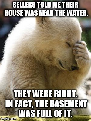 Facepalm Bear |  SELLERS TOLD ME THEIR HOUSE WAS NEAR THE WATER. THEY WERE RIGHT. IN FACT, THE BASEMENT WAS FULL OF IT. | image tagged in memes,facepalm bear | made w/ Imgflip meme maker