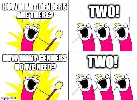What Do We Want Meme | HOW MANY GENDERS ARE THERE? TWO! HOW MANY GENDERS DO WE NEED? TWO! | image tagged in memes,what do we want | made w/ Imgflip meme maker
