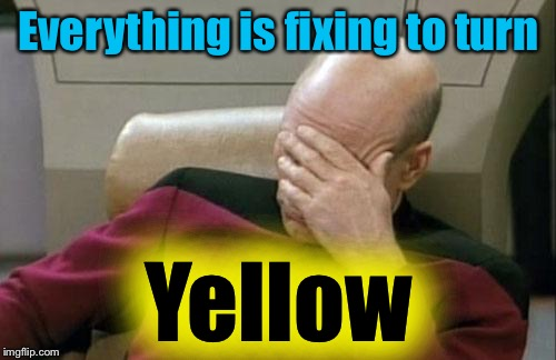 Captain Picard Facepalm Meme | Everything is fixing to turn Yellow | image tagged in memes,captain picard facepalm | made w/ Imgflip meme maker
