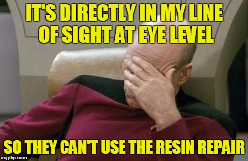 Captain Picard Facepalm Meme | IT'S DIRECTLY IN MY LINE OF SIGHT AT EYE LEVEL SO THEY CAN'T USE THE RESIN REPAIR | image tagged in memes,captain picard facepalm | made w/ Imgflip meme maker