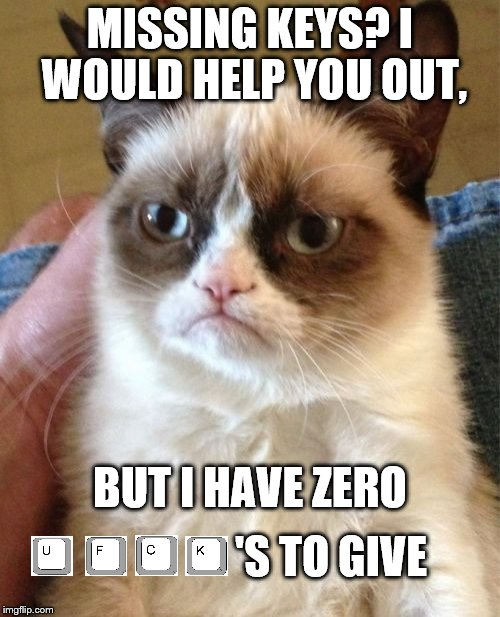 Grumpy Cat Meme | MISSING KEYS? I WOULD HELP YOU OUT, BUT I HAVE ZERO 'S TO GIVE | image tagged in memes,grumpy cat | made w/ Imgflip meme maker