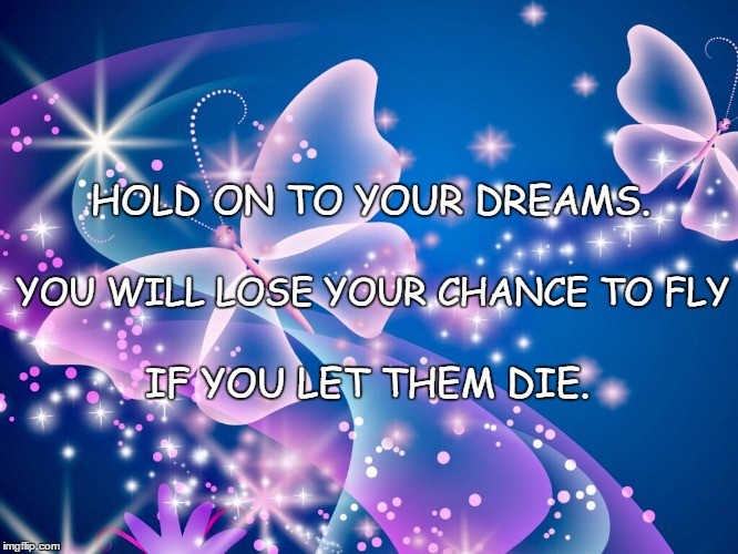 HOLD ON TO YOUR DREAMS. IF YOU LET THEM DIE. YOU WILL LOSE YOUR CHANCE TO FLY | image tagged in butterflies | made w/ Imgflip meme maker
