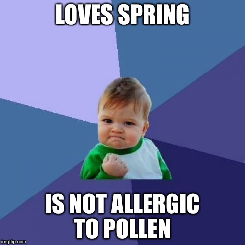 Success Kid Meme | LOVES SPRING IS NOT ALLERGIC TO POLLEN | image tagged in memes,success kid | made w/ Imgflip meme maker