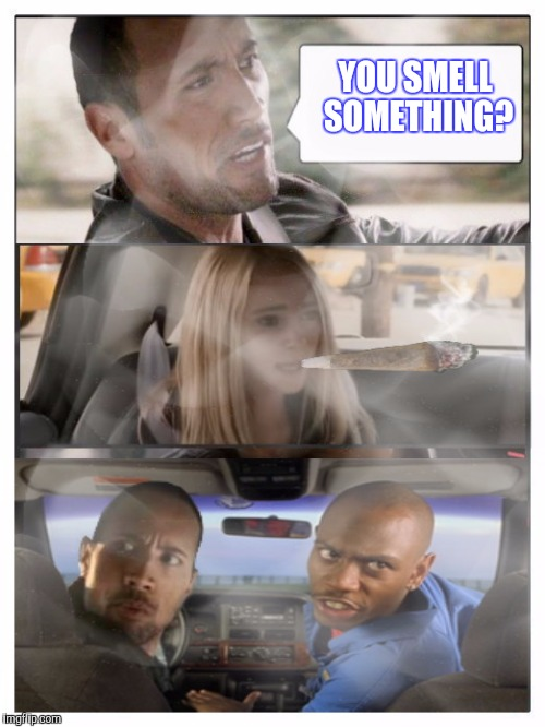 BAKINGAROCK | YOU SMELL SOMETHING? | image tagged in the rock driving,half baked,funny,weed | made w/ Imgflip meme maker