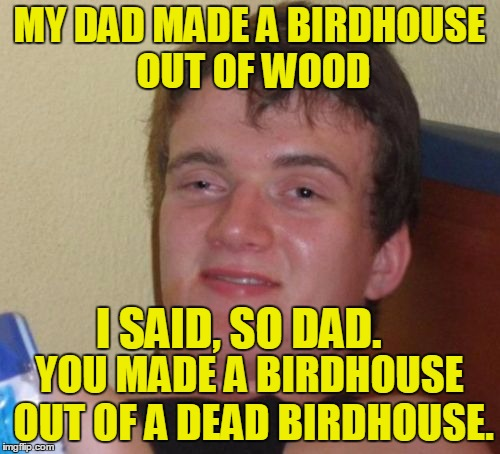 Set Your Clocks! We Spring Back Saturday Night | MY DAD MADE A BIRDHOUSE OUT OF WOOD YOU MADE A BIRDHOUSE OUT OF A DEAD BIRDHOUSE. I SAID, SO DAD. | image tagged in memes,10 guy,spring is in the air,funny | made w/ Imgflip meme maker
