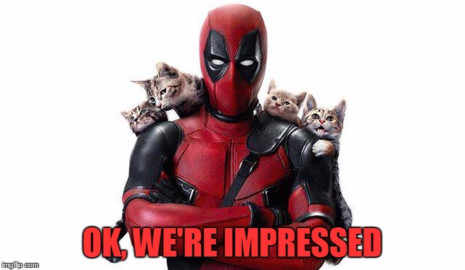 Deadpool With Kittens | OK, WE'RE IMPRESSED | image tagged in deadpool with kittens | made w/ Imgflip meme maker