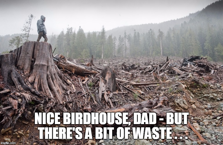 NICE BIRDHOUSE, DAD - BUT THERE'S A BIT OF WASTE . . . | made w/ Imgflip meme maker