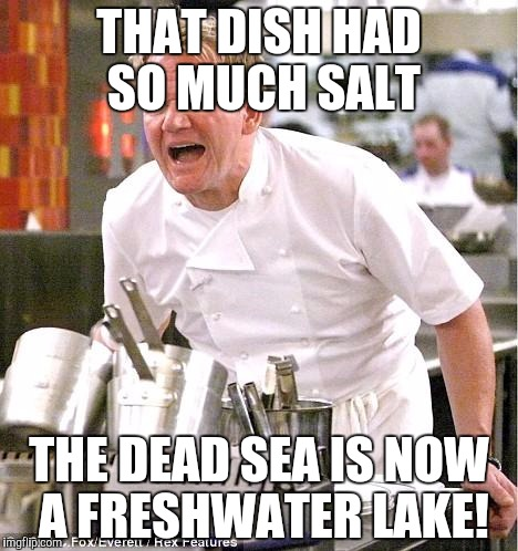 Chef Gordon Ramsay Meme | THAT DISH HAD SO MUCH SALT THE DEAD SEA IS NOW A FRESHWATER LAKE! | image tagged in memes,chef gordon ramsay | made w/ Imgflip meme maker