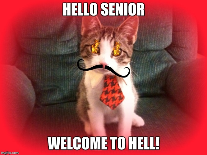 Demon Kitty Senior |  HELLO SENIOR; WELCOME TO HELL! | image tagged in demon,senior | made w/ Imgflip meme maker