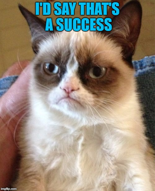Grumpy Cat Meme | I'D SAY THAT'S A SUCCESS | image tagged in memes,grumpy cat | made w/ Imgflip meme maker