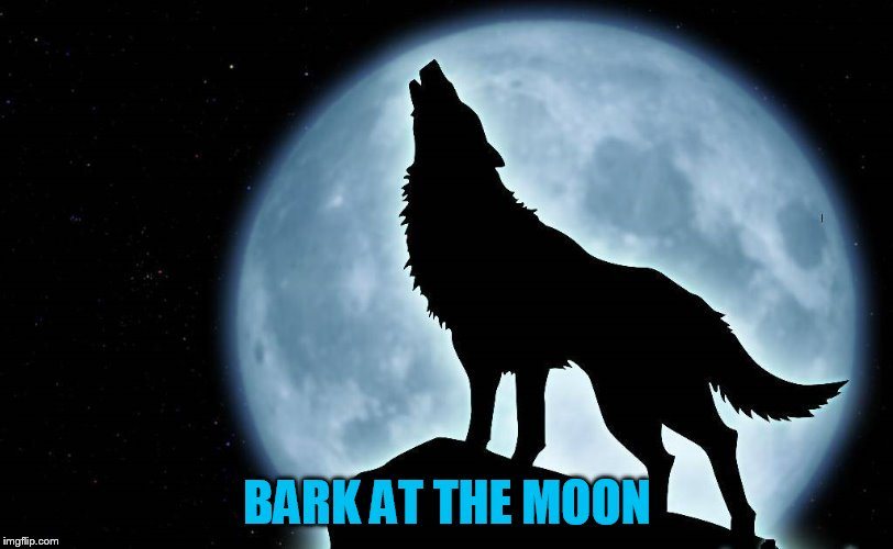 BARK AT THE MOON | made w/ Imgflip meme maker