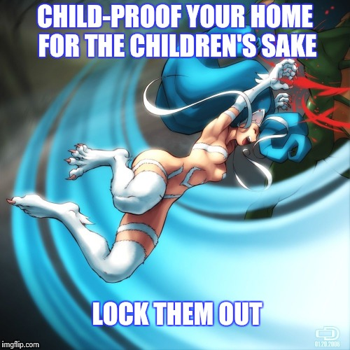 Cat girl Felicia | CHILD-PROOF YOUR HOME FOR THE CHILDREN'S SAKE LOCK THEM OUT | image tagged in cat girl felicia | made w/ Imgflip meme maker