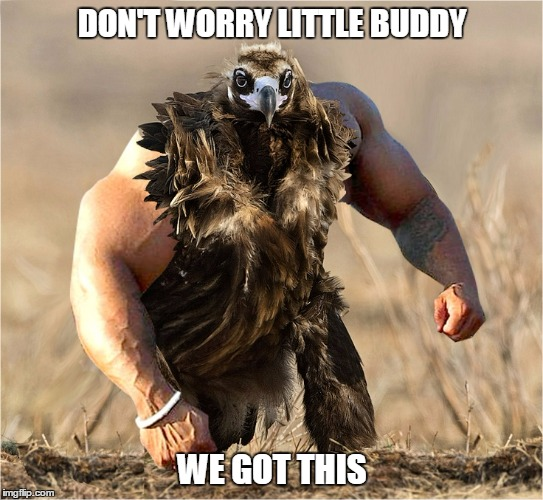 DON'T WORRY LITTLE BUDDY WE GOT THIS | made w/ Imgflip meme maker