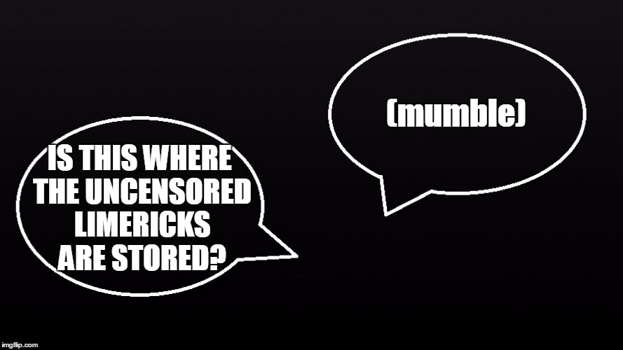 (mumble) IS THIS WHERE THE UNCENSORED LIMERICKS ARE STORED? | made w/ Imgflip meme maker