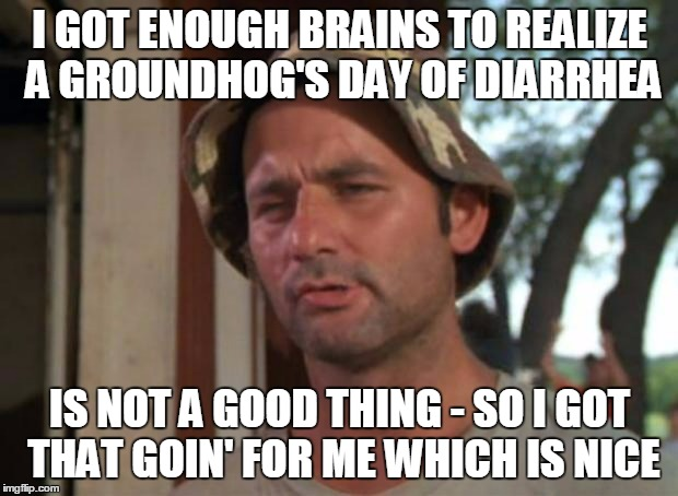 I GOT ENOUGH BRAINS TO REALIZE A GROUNDHOG'S DAY OF DIARRHEA IS NOT A GOOD THING - SO I GOT THAT GOIN' FOR ME WHICH IS NICE | made w/ Imgflip meme maker