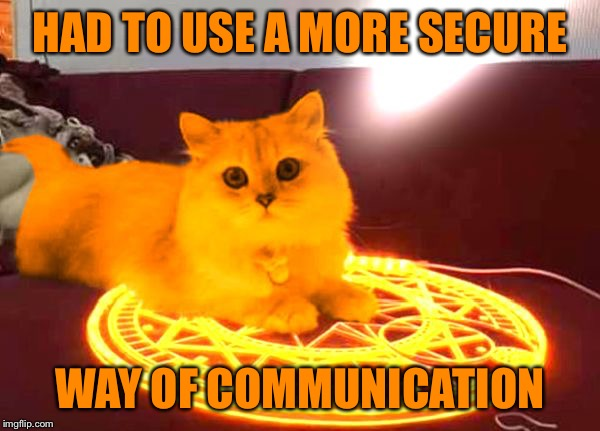 RayCat Powers | HAD TO USE A MORE SECURE WAY OF COMMUNICATION | image tagged in raycat powers | made w/ Imgflip meme maker
