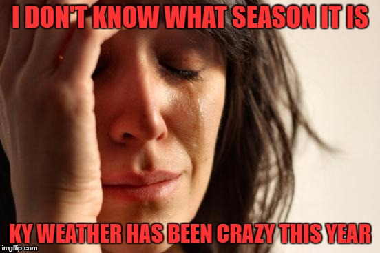 First World Problems Meme | I DON'T KNOW WHAT SEASON IT IS KY WEATHER HAS BEEN CRAZY THIS YEAR | image tagged in memes,first world problems | made w/ Imgflip meme maker