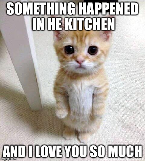 Cute Cat |  SOMETHING HAPPENED IN HE KITCHEN; AND I LOVE YOU SO MUCH | image tagged in memes,cute cat | made w/ Imgflip meme maker