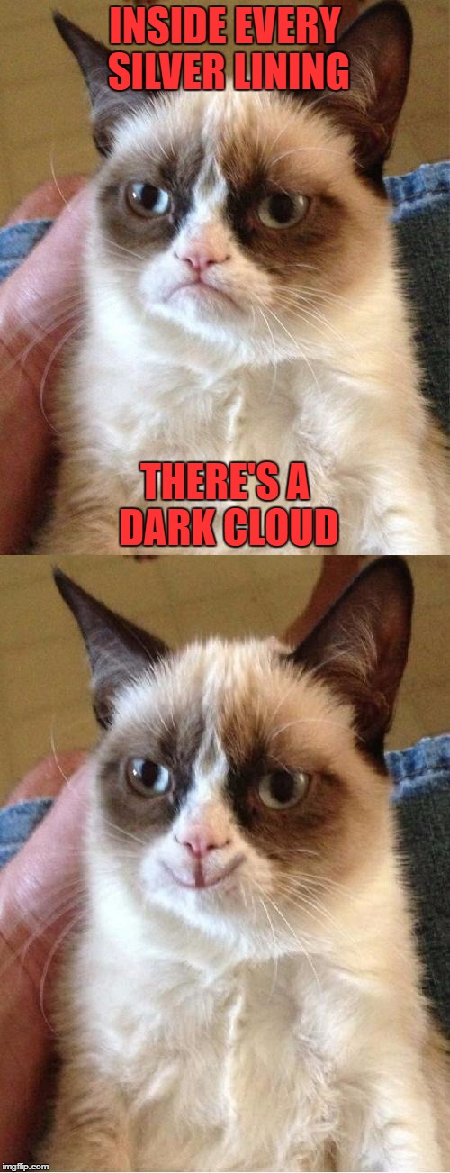 Grumpy Cat 2x Smile | INSIDE EVERY SILVER LINING THERE'S A DARK CLOUD | image tagged in grumpy cat 2x smile | made w/ Imgflip meme maker