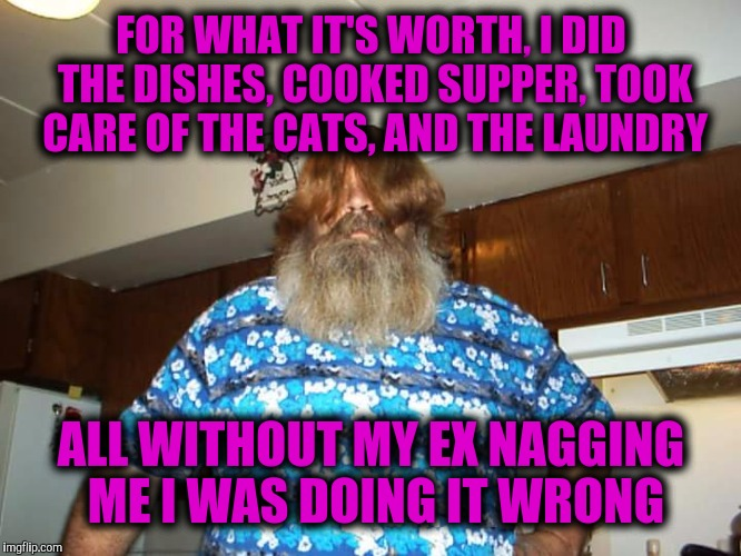 FOR WHAT IT'S WORTH, I DID THE DISHES, COOKED SUPPER, TOOK CARE OF THE CATS, AND THE LAUNDRY ALL WITHOUT MY EX NAGGING ME I WAS DOING IT WRO | made w/ Imgflip meme maker