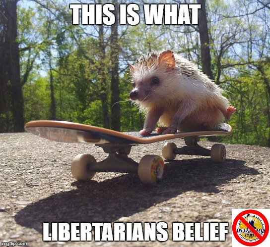 This Is What Libertarians Believe | THIS IS WHAT LIBERTARIANS BELIEF | image tagged in libertarian,libertarians,beliefs,believe,skateboard,memes | made w/ Imgflip meme maker