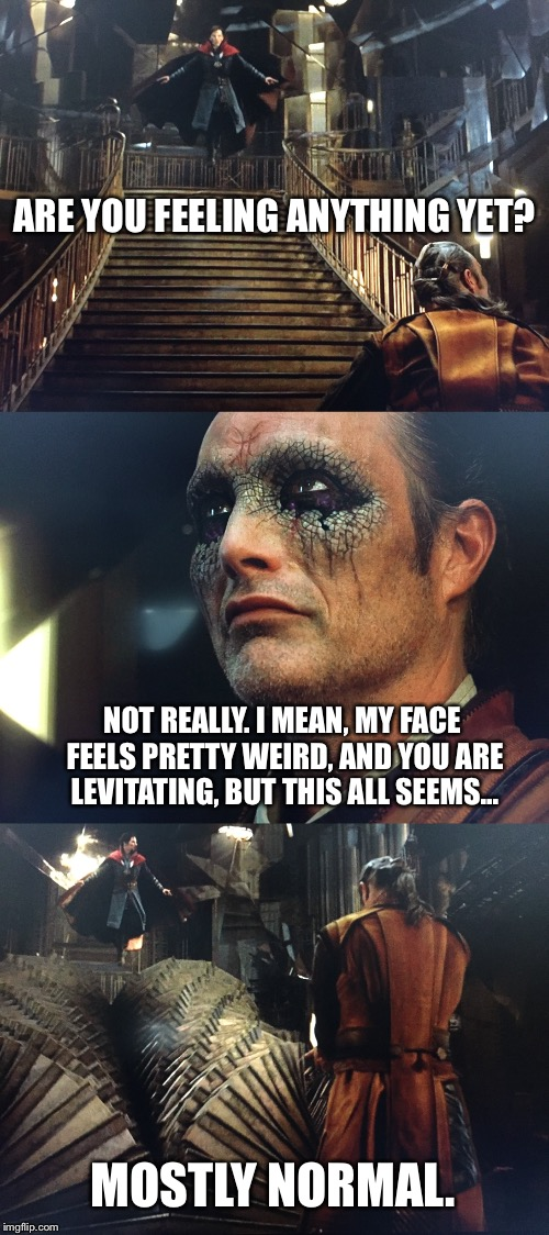 Doctor Strange and Kaecilius eat some shrooms. | ARE YOU FEELING ANYTHING YET? NOT REALLY. I MEAN, MY FACE FEELS PRETTY WEIRD, AND YOU ARE LEVITATING, BUT THIS ALL SEEMS... MOSTLY NORMAL. | image tagged in memes,funny,doctor strange | made w/ Imgflip meme maker