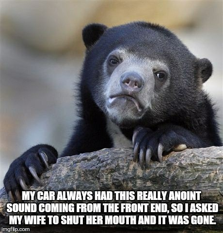 Confession Bear Meme | MY CAR ALWAYS HAD THIS REALLY ANOINT SOUND COMING FROM THE FRONT END, SO I ASKED MY WIFE TO SHUT HER MOUTH AND IT WAS GONE. | image tagged in memes,confession bear | made w/ Imgflip meme maker