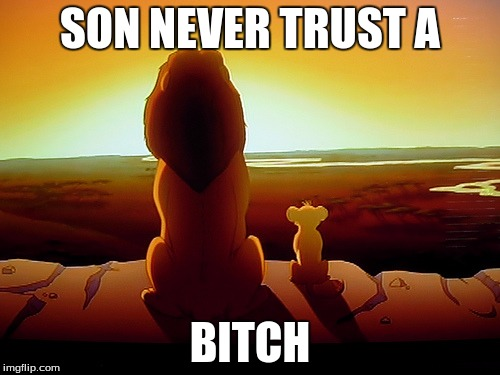 Lion King Meme | SON NEVER TRUST A B**CH | image tagged in memes,lion king | made w/ Imgflip meme maker