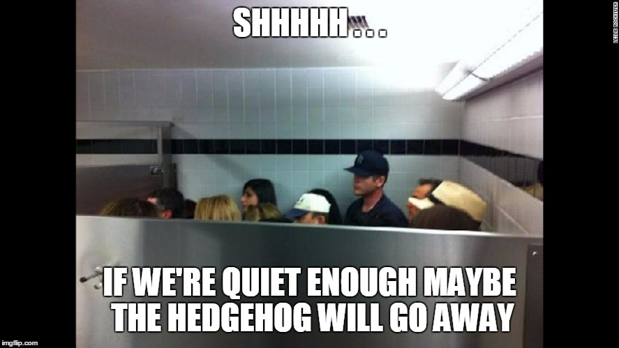 SHHHHH . . . IF WE'RE QUIET ENOUGH MAYBE THE HEDGEHOG WILL GO AWAY | made w/ Imgflip meme maker