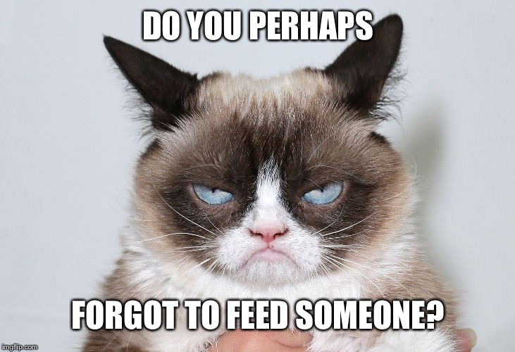 Grumpy evil | DO YOU PERHAPS FORGOT TO FEED SOMEONE? | image tagged in grumpy evil | made w/ Imgflip meme maker
