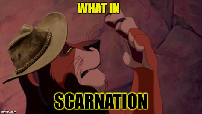 What in tarnation | WHAT IN SCARNATION | image tagged in memes,lion king scar,what in tarnation week | made w/ Imgflip meme maker