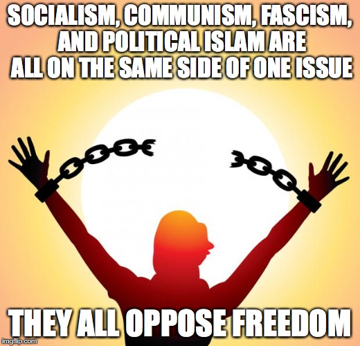freedom | SOCIALISM, COMMUNISM, FASCISM, AND POLITICAL ISLAM ARE ALL ON THE SAME SIDE OF ONE ISSUE THEY ALL OPPOSE FREEDOM | image tagged in freedom | made w/ Imgflip meme maker