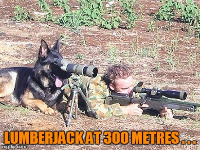 LUMBERJACK AT 300 METRES . . . | made w/ Imgflip meme maker