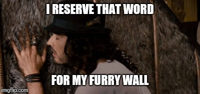 I RESERVE THAT WORD FOR MY FURRY WALL | made w/ Imgflip meme maker