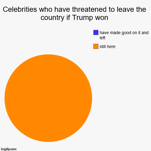 Celebrities who have threatened to leave the country if Trump won | still here, have made good on it and left | image tagged in funny,pie charts,donald trump | made w/ Imgflip pie chart maker