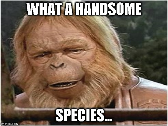 WHAT A HANDSOME SPECIES... | made w/ Imgflip meme maker