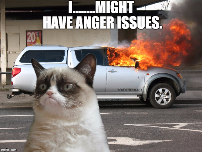 Grumpy Cat Fire Car | I........MIGHT HAVE ANGER ISSUES. | image tagged in grumpy cat fire car | made w/ Imgflip meme maker