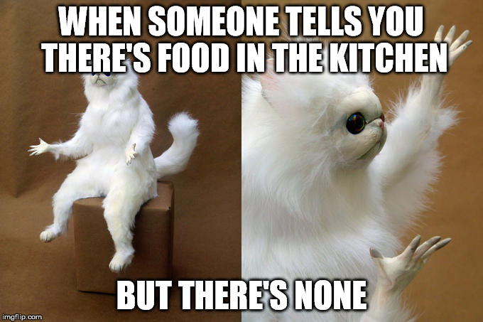 Persian Cat Room Guardian Meme | WHEN SOMEONE TELLS YOU THERE'S FOOD IN THE KITCHEN BUT THERE'S NONE | image tagged in memes,persian cat room guardian | made w/ Imgflip meme maker