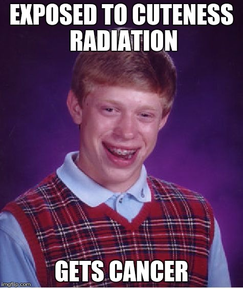 Bad Luck Brian Meme | EXPOSED TO CUTENESS RADIATION GETS CANCER | image tagged in memes,bad luck brian | made w/ Imgflip meme maker