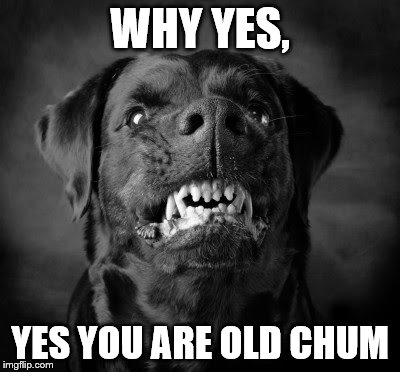 WHY YES, YES YOU ARE OLD CHUM | made w/ Imgflip meme maker