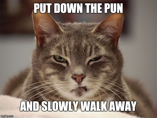 PUT DOWN THE PUN AND SLOWLY WALK AWAY | made w/ Imgflip meme maker
