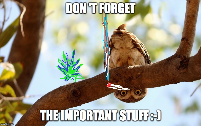 Gettin' Ready For The Weekend :-) | DON'T FORGET THE IMPORTANT STUFF :-) | image tagged in important stuff | made w/ Imgflip meme maker